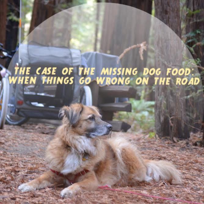 The Case of the Missing Dog Food