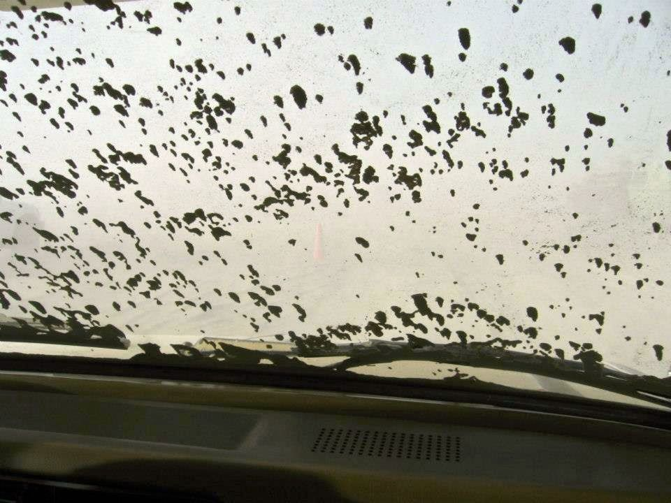 Dust dunes forming on the windshield as we drove into Black Rock City